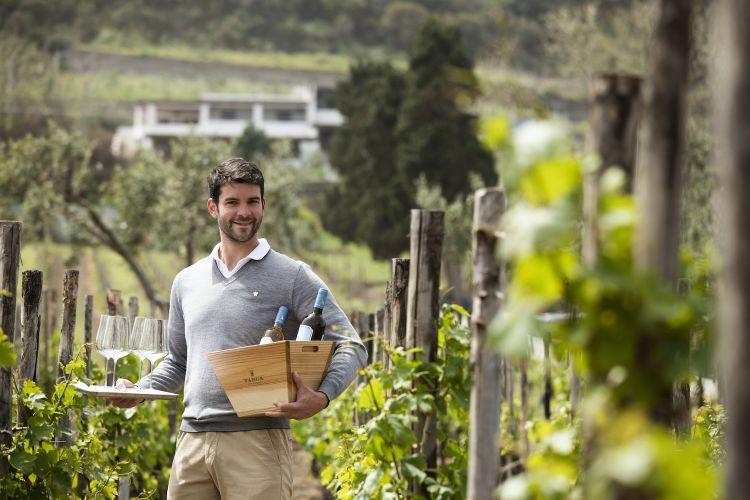 Giulio Bruni, sommelier da Capofaro, tra le vigne.FotoMatteo Carassale