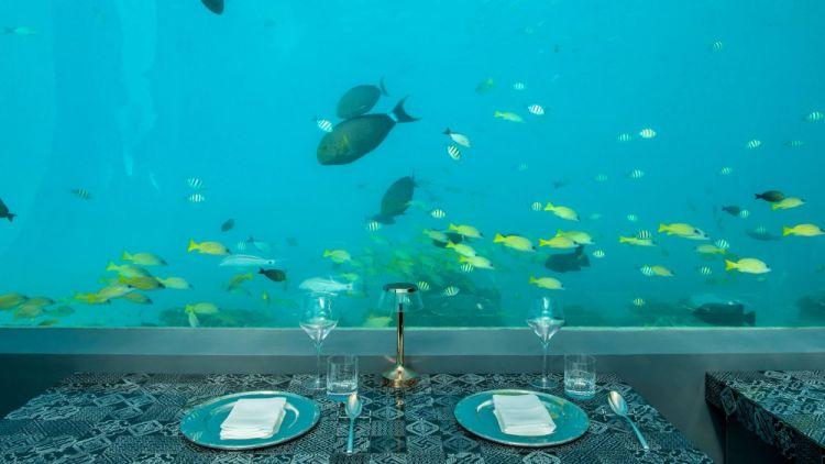 Panorama subacqueo dai tavoli