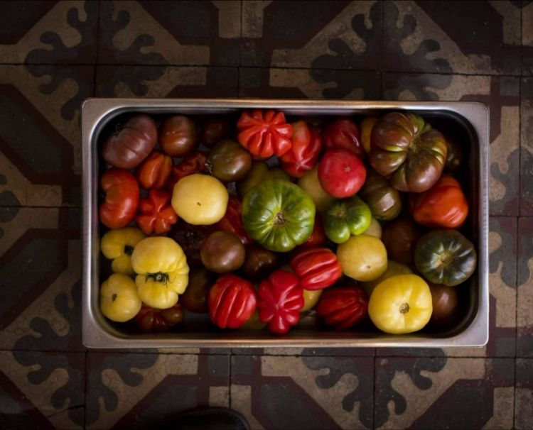 The peak of tomato production (a dozen different varieties), grown in the restaurant's plot, is celebrated atDon Juliowith theFiesta del Tomate