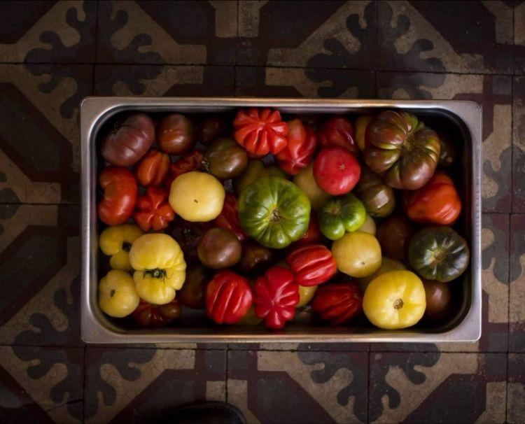 L'apice della produzione dei pomodori (una dozzina di varietà diverse), coltivati negli orti del ristoranteviene celebrata a Don Julio con la Fiesta del Tomate