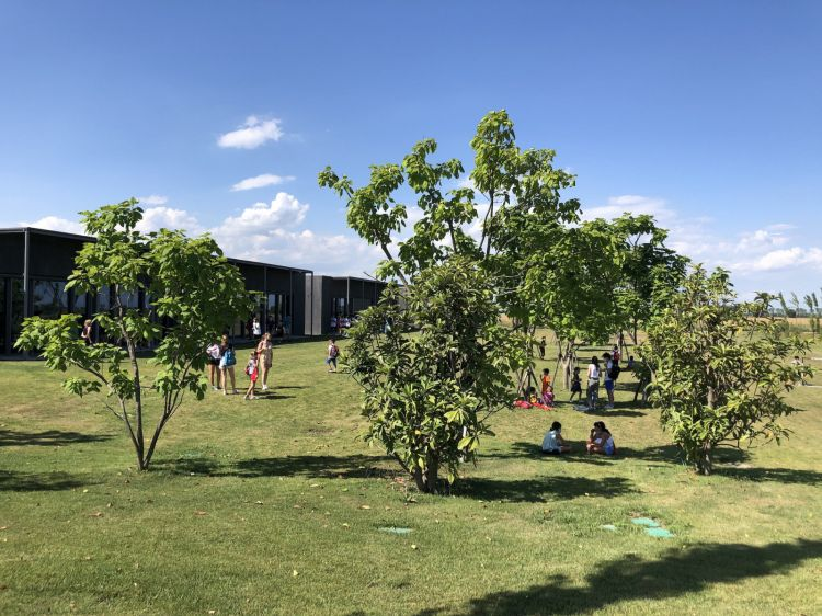 A segment of the Campus.H-Farmwelcomes children and students, from kindergarten to university