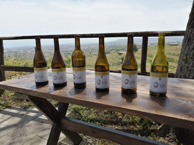 I vini sono stati degustati alla cieca, seguendo un ordine geografico