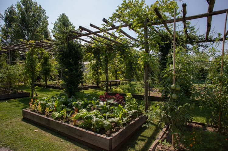 The vegetable garden at Le Cementine