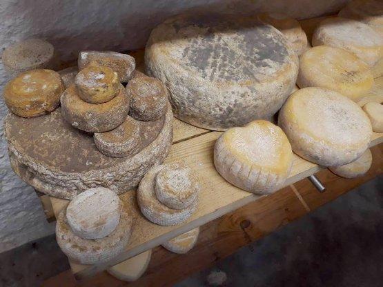 Altri formaggi di Cascina Nerchi