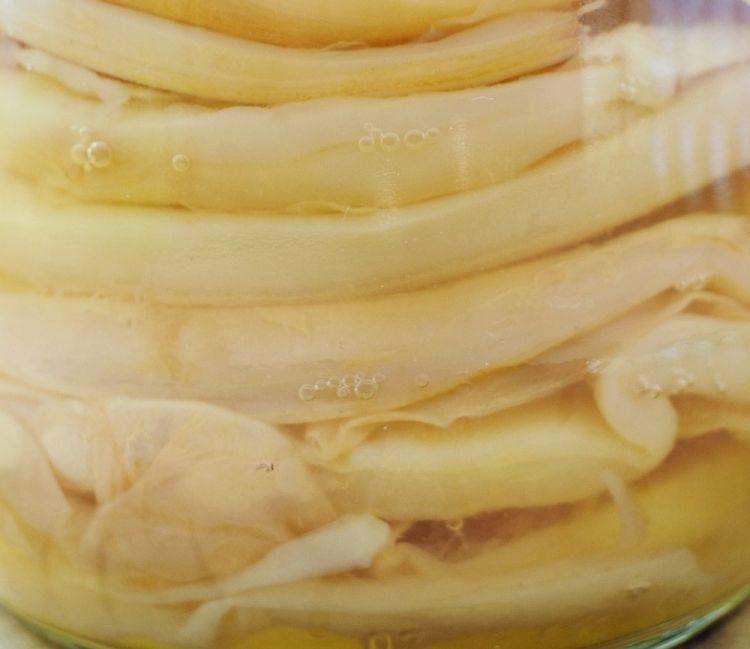 Cosa vuol dire SCOBY: symbiotic colony of bacteria and yeast. Ha le apparenze di una ciambella gelatinosa e assume la forma del contenitore in cui viene messa