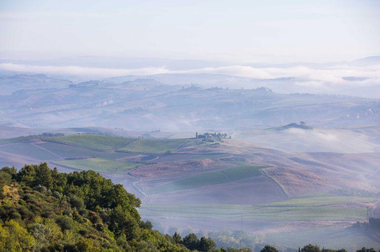 Una bella e suggestiva immagine del territorio di Montalcino