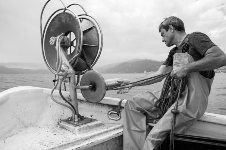 Raieü, Via Milite Ignoto, 25 - Lavagna (Genova) - Foto di Laura Bianchi  «Raieü era un pescatore noto agli abitanti e ai tanti turisti del periodo estivo. Gironzolava per il borgo cantando il bottino del giorno, in sella alla sua bicicletta con le cassette di pesci sul manubrio. Giulio era un uomo molto fortunato, sua moglie Maria Dasso era una cuoca sopraffina. Con lei nei primi anni Sessanta, quando a causa del basso valore commerciale del pescato mantenere una famiglia di quattro figli incominciava a esser impresa ardua, decise di aprire una piccola trattoria. E il locale prescelto fu proprio quel magazzino di reti di proprietà, allocato nella parte più bassa del paese, quella che un tempo era la ciappaia (dove venivano estratte le ciappe, le lastre di ardesia), in cui tira sempre un bel venticello. Cucina tipica ligure, quella che Maria sapeva interpretare benissimo, con il pescato fresco giornaliero di Giulio. Nulla di più, ma soprattutto nulla di meno. Sono passati 48 anni, Cavi Borgo è cambiata come il mondo tutto, e Raieü è ancora la trattoria che era».  Greta Contardo