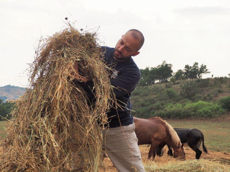 Varvaraat work in the fields