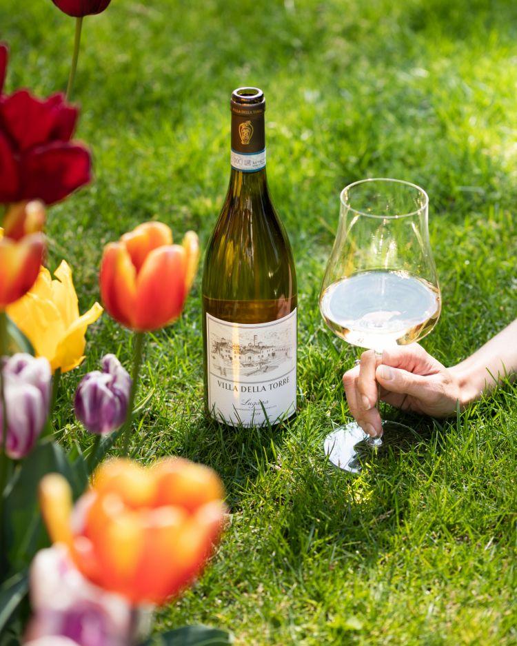 Il Lugana di Villa della Torre,prodotto in sole diecimila bottiglie ricavate da dieci ettari nella località San Donino, a Desenzano del Garda