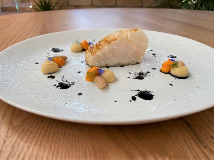 Baccalà scottato con purea di fagioli, carote e nero di seppia