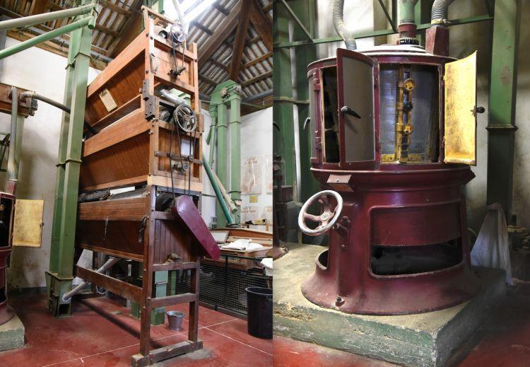 A sinistra, i cilindri a grana verde; a destra, l'amburgo