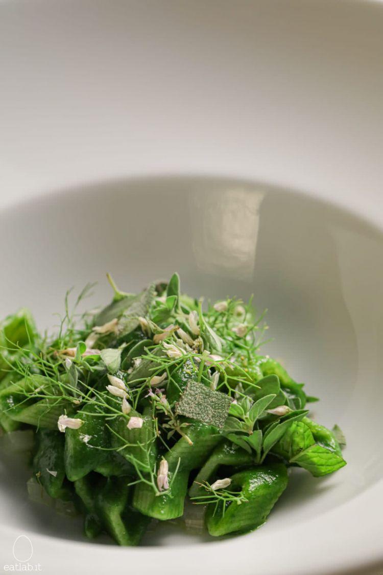 La pasta col nostro raccolto: pasta cortissima da cucchiaio condita con una crema di bietole selvatiche, i suoi gambi marinati e sopra insalata di aromatiche