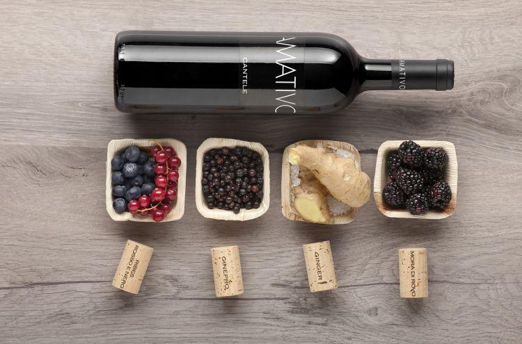 Il vino simbolo della cantina: Amativo