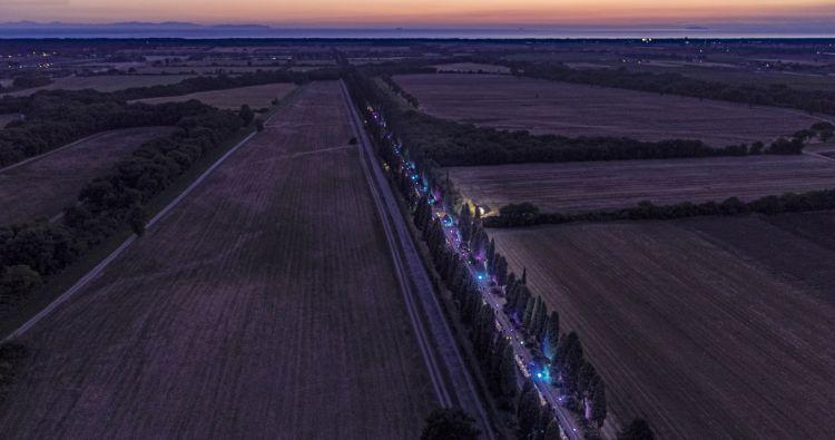 Scende la sera sui magnifici viali alberati di Bolgheri
