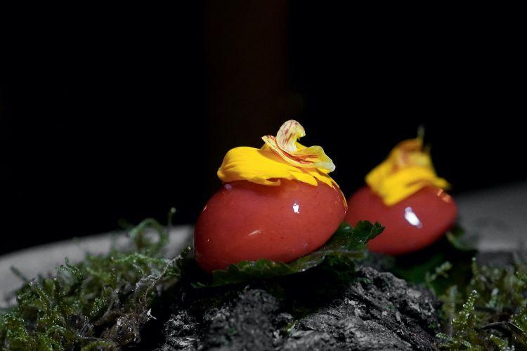 Predessert: Fragoline di bosco e melissa