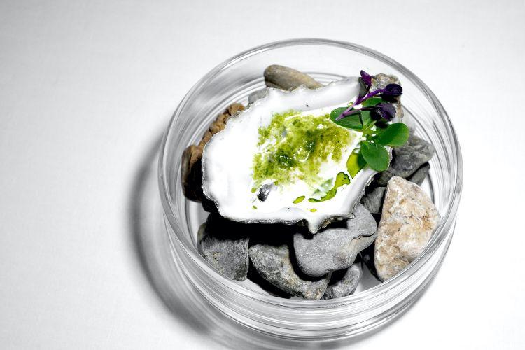 Ostrica, granita al levistico, riduzione di latte e germogli