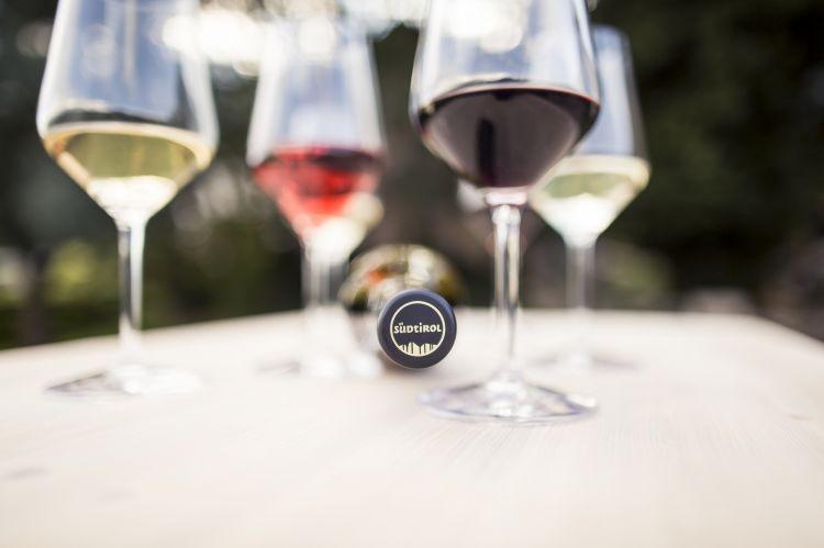 Tra le varietà autoctone a bacca rossa Lagrein eSchiava, e poi i grandi bianchi apprezzati in tutto il mondo:Pinot Bianco, Gewürztraminer, Sylvaner, Veltliner, Chardonnay, Riesling