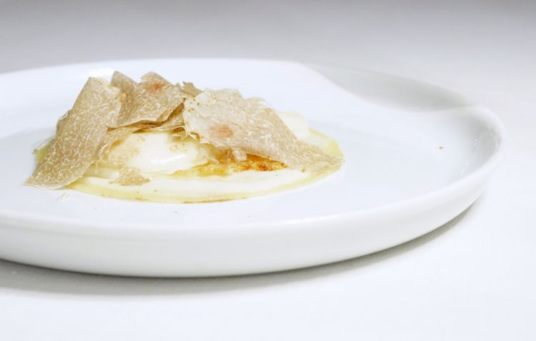 Straordinaria questa Crespella alla besciamella, crostedi Parmigiano, fonduta e tartufo bianco. Archetipica, un capolavoro