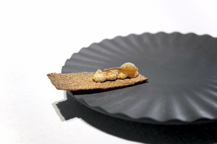 Crackers con cipollina, crema di miso e polvere di porcini