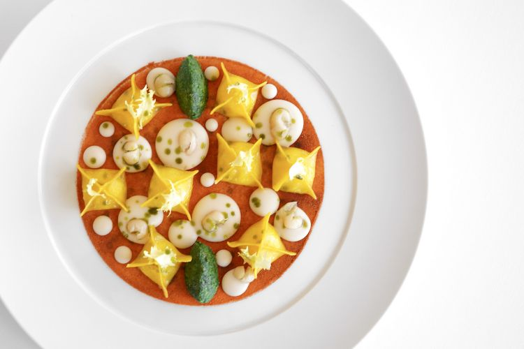 Tortelli di Parmigiano Reggiano 36 mesi, fagioli di Controne, scarola ripassata e peperoni cruschi
