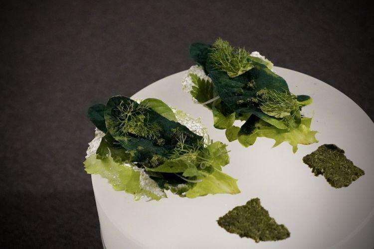 Boccone di erbe con foglie di lattuga bagnate nello zucchero, finocchietto, origano, basilico artico, elicriso, il quinto quarto della nepitella