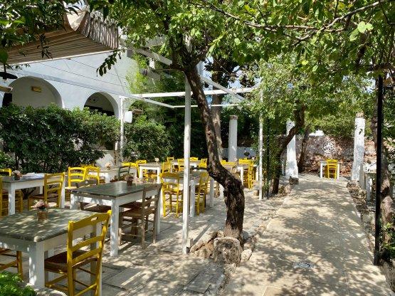 L'esterno del ristorante, tavolinitra gli aberi di agrumi e atmosfera easy chic