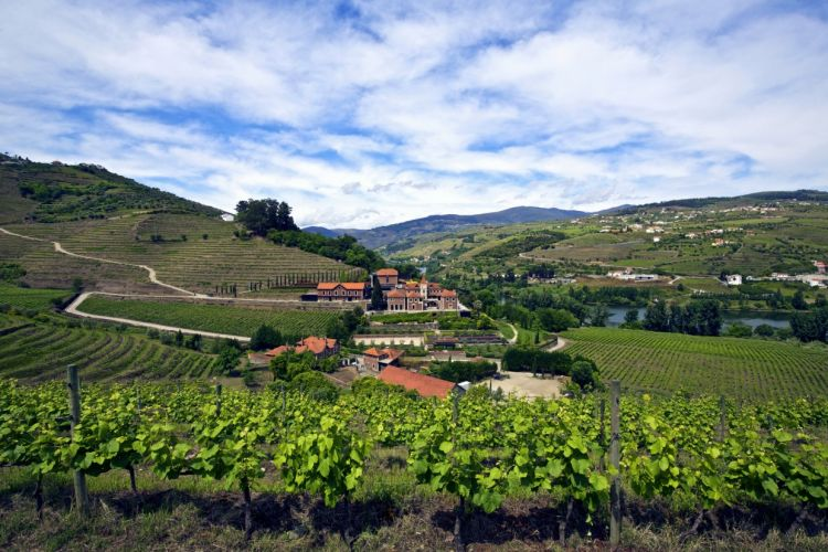TheSix Senses Douro Valleysurrounded by nature