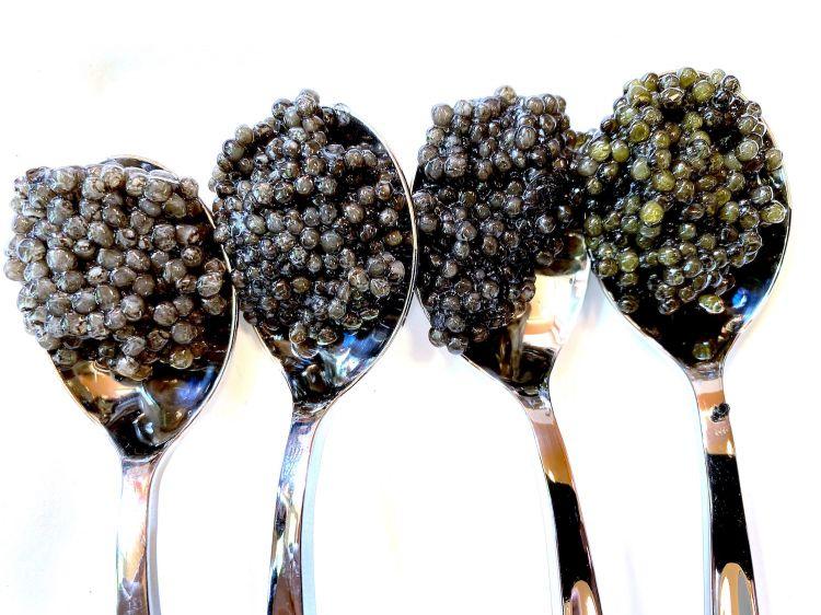 Varie tipologie di caviale Caviar Cru