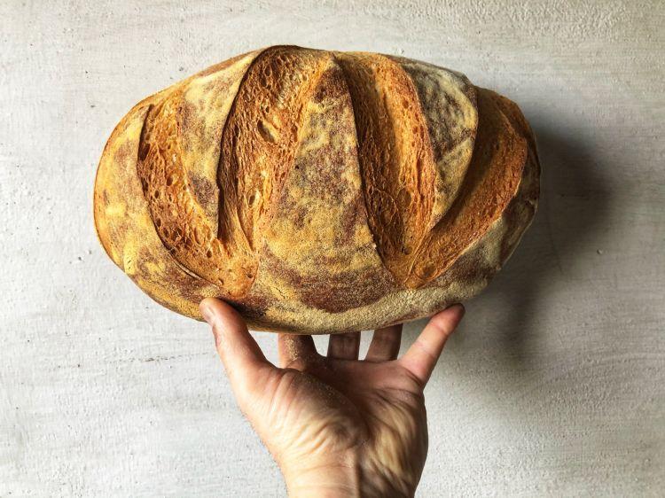 Il pane del Vatti