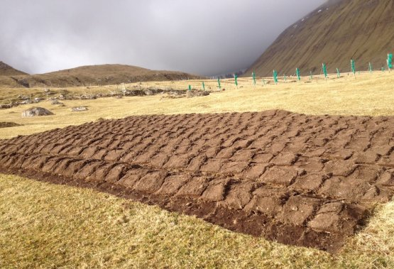 A potato field at the entrance of Giógv. As the a