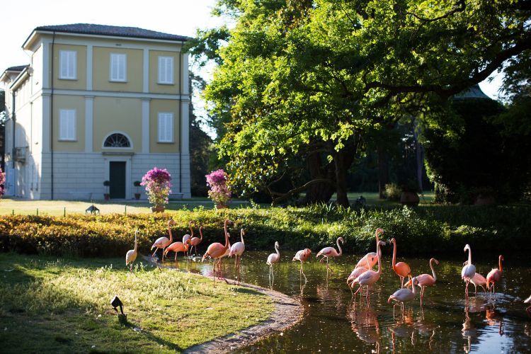 Villa Abbondanzi Resort a Faenza (Ravenna)