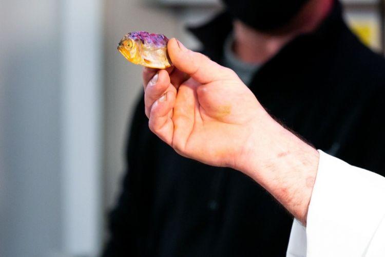 Simone Fraquelli, nel corso del suo intervento, ha raccontatol'evoluzione storica del filetto di missoltino