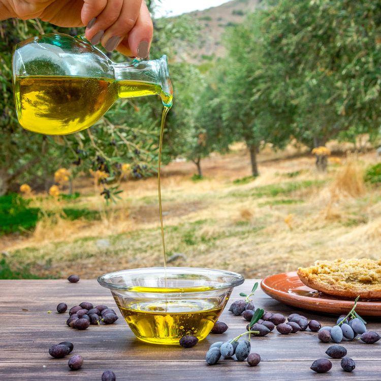 Gli abitanti di Creta amano l'olio e ne fanno uso in quantità. Oltre al frutto, anche l'albero è funzionale alla vita quotidiana degli isolani che impiegano la legna per scaldarsi o perintagliare strumenti di ogni tipo. Apprezzano talmente tanto quest'albero,che alcuni anziani dell'isola svelano che «anche solo sedersi sotto la sua chioma, sia in grado di apportare enormi benefici»