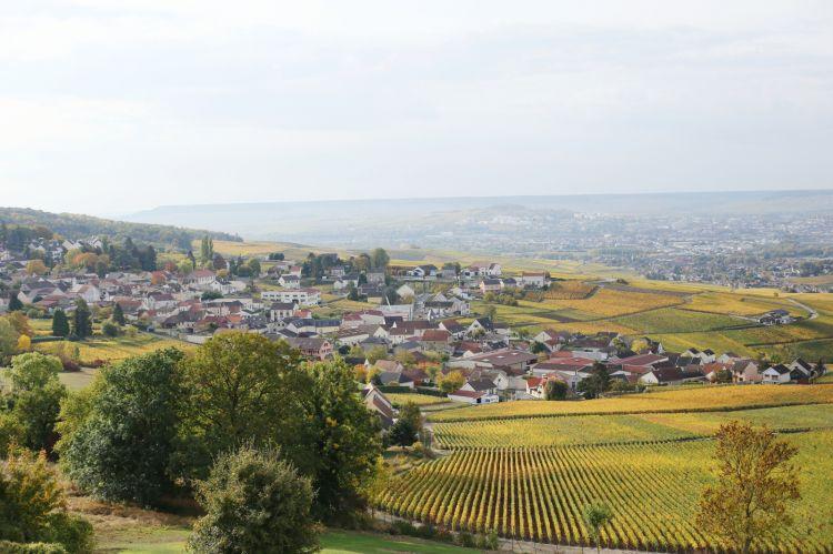 La zona della Champagne, che si estende a circa 150 km a Nord Est di Parigi