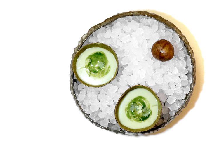 Di nuovo un rimando gustativo al piatto precedente, in una specie di continuum che innerva la degustazione: torna l'avocado con Gazpacho, ossia gazpacho di avocado con olio al coriandolo ed erbe aromatiche
