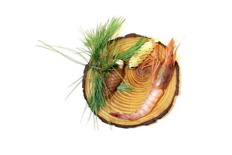 Gambero di pino: il gambero, spettacolare, viene affumicato bruciando aghi di pino, poi è laccato con olio al pepe bianco e servito con limone alla brace. In accompagnamento, un analcolico alle alghe. Piatto già importante, lavorandoci può diventare strepitoso