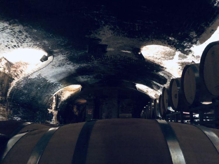 Una delle sezioni più antiche della Pio Cesare ad Alba nelle Langhe. Sotto, bottiglie di Barolo e Barbaresco che dormono tra le mura romane della stessa cantina