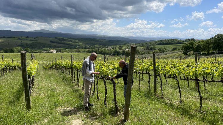 Giovanni Bulgari e Stefano Piccio nelle vigne
