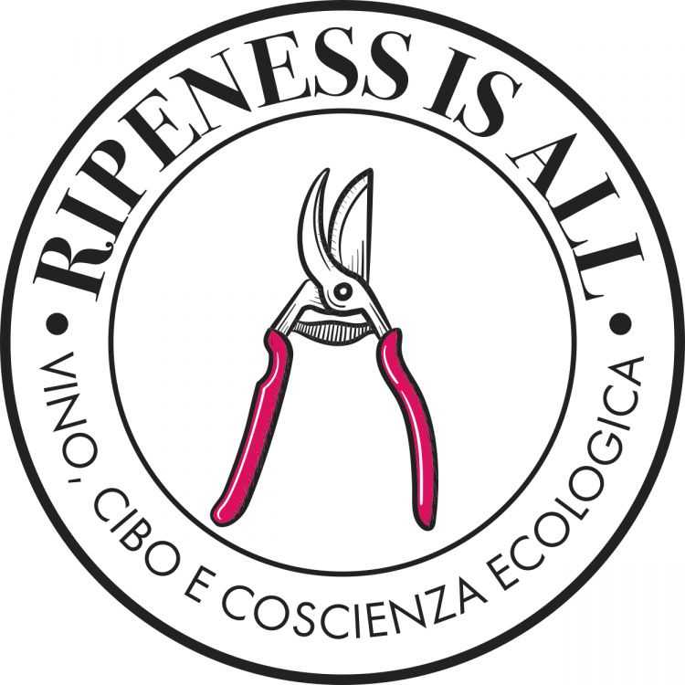 Il logo diripenessisall.com