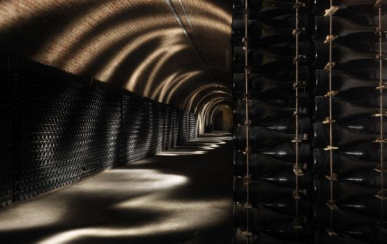 The cellars in Reims