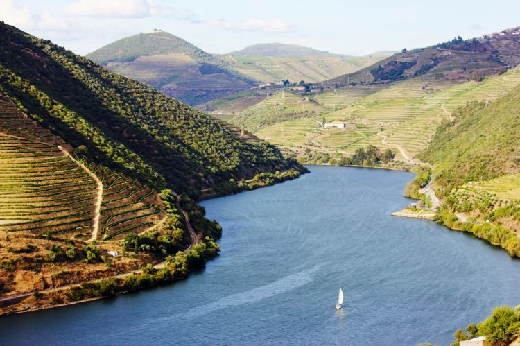 A view of Douro