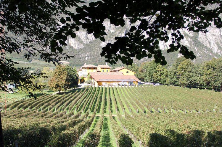 La tenuta si trova ad Avio, in Trentino, nella Valle dell'Adige