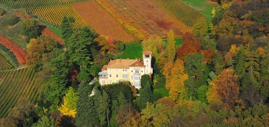 Villa Gresti circondata dai vigneti in autunno
