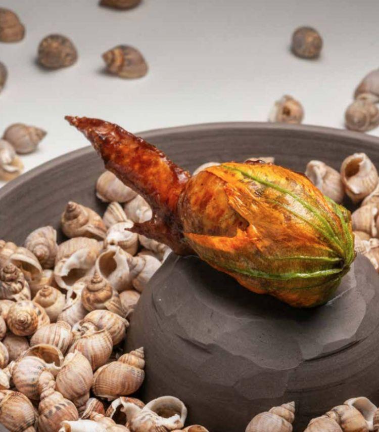 Due piatti dell'albedo:Aletta di pollo ripiena, pasta spezzata, zucchine e lumachine di mare...
