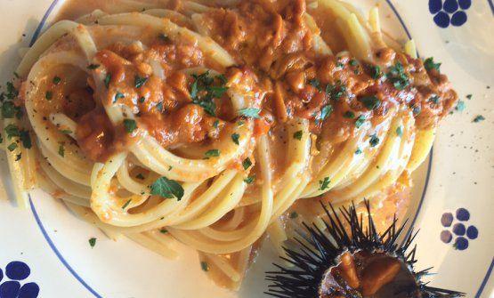 Gli Spaghetti ai ricci di mare della Taverna del Porto di Tricase (Lecce)