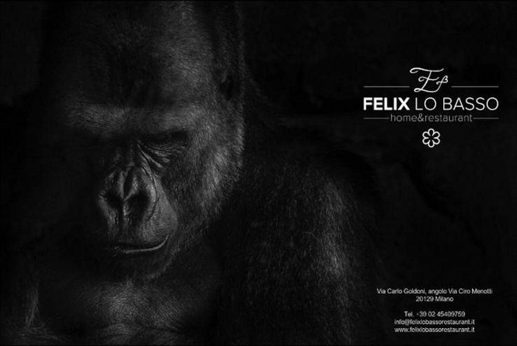 Il gorilla simbolo del nuovo locale