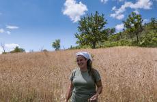 Daniela Brunetti, una laurea in Ingegneria aerospazialea Pisa,tornata nella nativaPlataci (Cosenza) per fondare l'azienda agricolaPodere Collina del Vento(foto diFranco Di Benedetto)