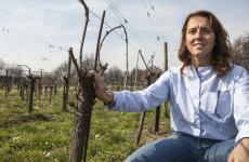 Francesca Moretti, fondatrice etitolare di Petra Winesa Suvereto (Livorno) dal 1997