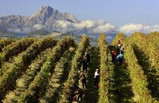I bellissimi paesaggi d'Abruzzo, tra vigneti e montagne