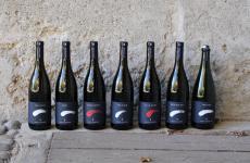 Le sette nuove Comete di Lageder